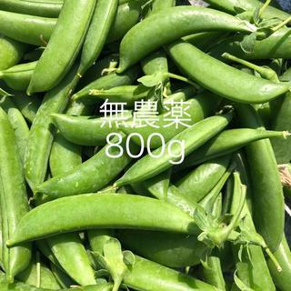 スナップえんどう スナックえんどう 800gお入れして発送致します😋(野菜)