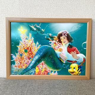 ディズニー(Disney)のディズニー カレンダー ポスター フランダー  B4-21(ポスター)