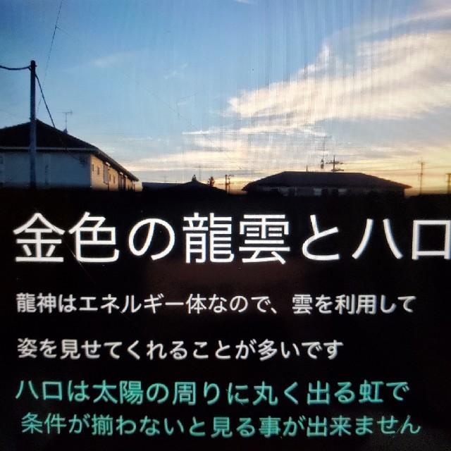 メッセージ☆生命はゆっくり☆龍の絵付き エンタメ/ホビーの本(人文/社会)の商品写真