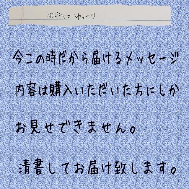 メッセージ☆生命はゆっくり☆龍の絵付き その他のその他(その他)の商品写真