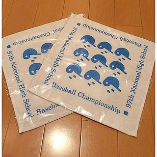 アサヒシンブンシュッパン(朝日新聞出版)の全国高校野球選手権大会 記念ハンカチタオル2枚セット(記念品/関連グッズ)