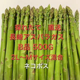 ネコポス 長崎産アスパラガス B品 500G(野菜)