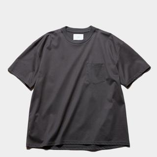 ワンエルディーケーセレクト(1LDK SELECT)のstein OVERSIZED POCKET TEE gray Lサイズ(Tシャツ/カットソー(半袖/袖なし))