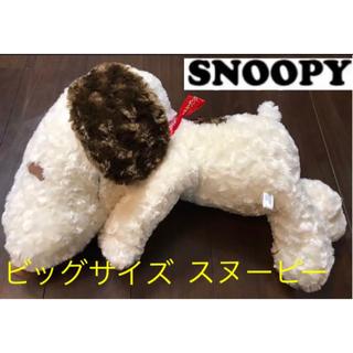 SNOOPY - スヌーピー SNOOPY★ビッグサイズぬいぐるみ