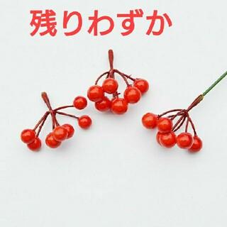(666) フラワーアレンジ 木の実 センリョウ 赤(その他)
