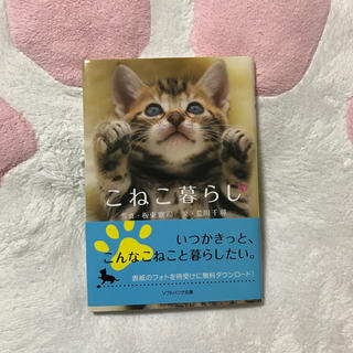 ソフトバンク(Softbank)のこねこ暮らし(文学/小説)