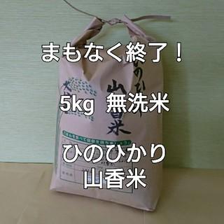 まもなく終了! 5kg 無洗米 令和元年 大分県産 ひのひかり 山香米(米/穀物)