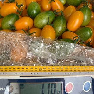 〈三須トマト農園〉プレミアムカクテルトマト1kg(野菜)