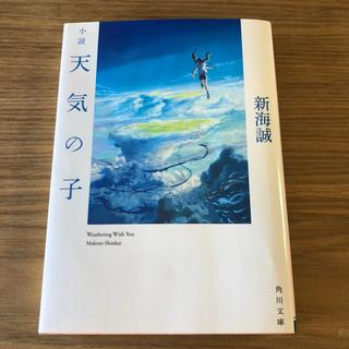 天気の子 小説(文学/小説)