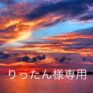ディズニー(Disney)のりったん様専用ページ☆(絵画/タペストリー)