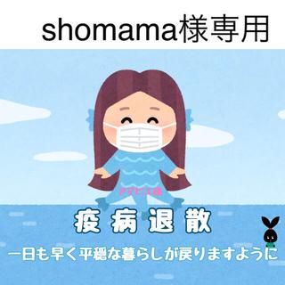 5/19 shomama様専用(その他)