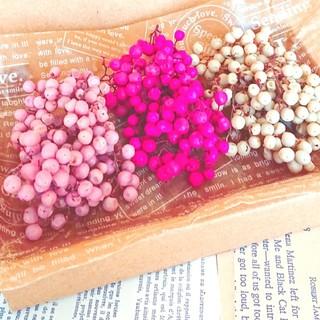 ペッパーベリー3色セット(ベビーピンク、ピンク、アイボリー)(ドライフラワー)
