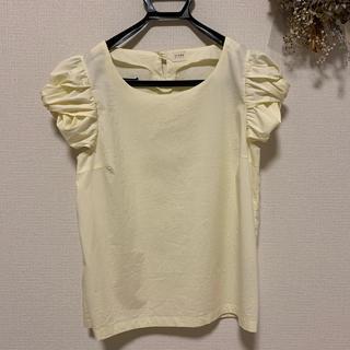 ティアンエクート(TIENS ecoute)のティアンエクート ボリュームスリーブTシャツ 半袖(Tシャツ(半袖/袖なし))