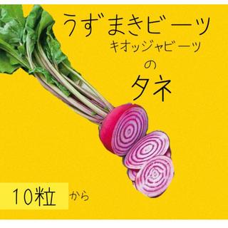うずまきビーツ キオッジャビーツ 種(野菜)