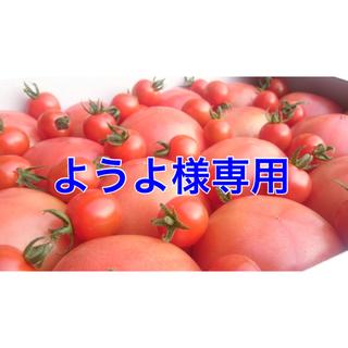 ようよ様専用(野菜)