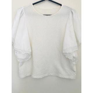 ジルスチュアート(JILLSTUART)のJILLSTUART(Tシャツ(半袖/袖なし))