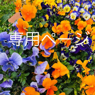 タロサク様専用☆犬服☆ハンドメイド☆タンクトップ(ペット服/アクセサリー)