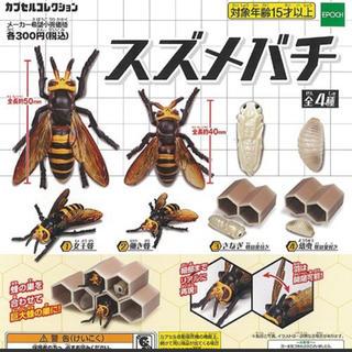 スズメバチ 全4種セット(模型/プラモデル)