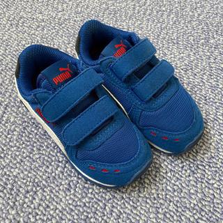 PUMA - PUMA 子供靴 14cm