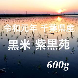 令和元年千葉県産 無農薬 古代米 黒米 玄米 紫黒苑 600g(米/穀物)