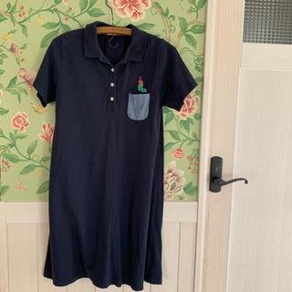 グラニフ(Design Tshirts Store graniph)のはらぺこあおむしグラニフポロワンピース(ひざ丈ワンピース)