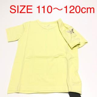 バタフライ(BUTTERFLY)のZ5 BUTTERFLY 半袖Tシャツ SIZE110〜120cm(Tシャツ/カットソー)