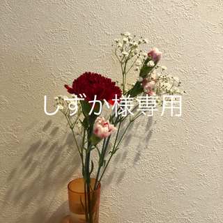 アナザーエディション(ANOTHER EDITION)のしずか様専用(ロングワンピース/マキシワンピース)