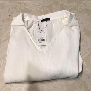 エージープラス(a.g.plus)のコットンシャツ 五分袖(シャツ/ブラウス(半袖/袖なし))
