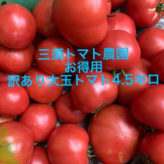 超お得‼︎訳あり大玉トマト 4.5キロ(野菜)