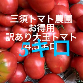 超お得‼︎訳あり大玉トマト 5キロ(野菜)