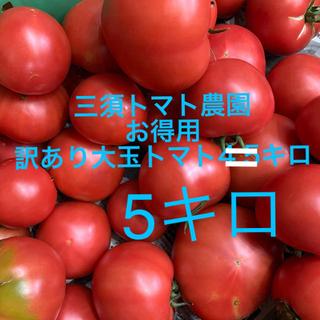 sisii様専用 超お得‼︎訳あり大玉トマト 5キロクール便(野菜)