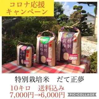 コロナ応援キャンペーン!!もっちり党に大人気✼宮城県産だて正夢10キロ(米/穀物)