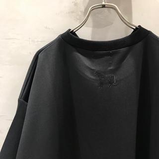 イアパピヨネ(ear PAPILLONNER)のear papillonner 切り替えビッグTシャツ(Tシャツ(半袖/袖なし))