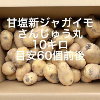 【鹿児島産】甘塩新ジャガイモ10キロ^_^(野菜)
