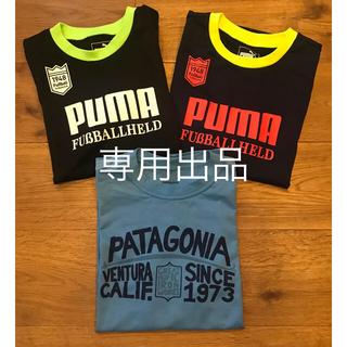 patagonia - patagonia 、puma Tシャツ3枚セット