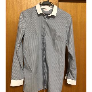 アオヤマ(青山)の【専用】AOYAMA レディース Yシャツ ブルーストライプ 13号(シャツ/ブラウス(長袖/七分))