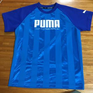 PUMA - プーマ プラシャツ Tシャツ 150