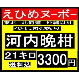 ★大大1 えひめヌーボーの 少し 訳あり 河内晩柑 よりお得な21キロ (フルーツ)