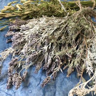 香り立つ無農薬出来たてドライハーブ ラベンダー2種類ローズマリー白妙菊タイムなど(ドライフラワー)