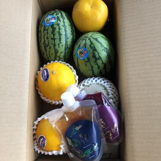 長崎県島原産!!【感動の赤しそ】ジュースと果物セット(フルーツ)