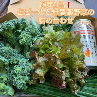 限定1品❗️缶ビールと無農薬野菜の詰め合わせ*一番搾り*コンパクトで翌日配達*(野菜)