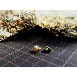 両面カシメ 真鍮 並足 100個セット ゴールド 金 カシメ(金属工芸)