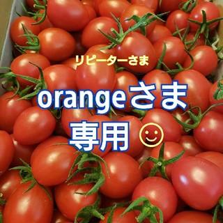 2㎏ orangeさま専用です☺️ ミニトマト(野菜)