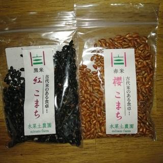 黒米 赤米 30グラム×2(米/穀物)