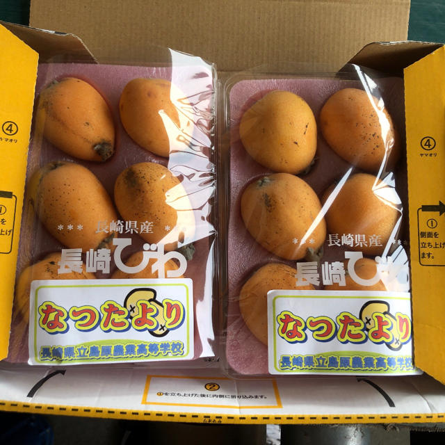 長崎県島原産!!美味しいびわ2パック!! 食品/飲料/酒の食品(フルーツ)の商品写真