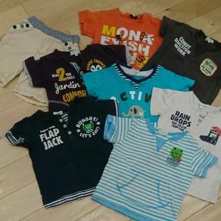 3can4on - サンカンシオン Tシャツ7枚&ショートパンツ1枚セット 90 男の子 カエル ピ