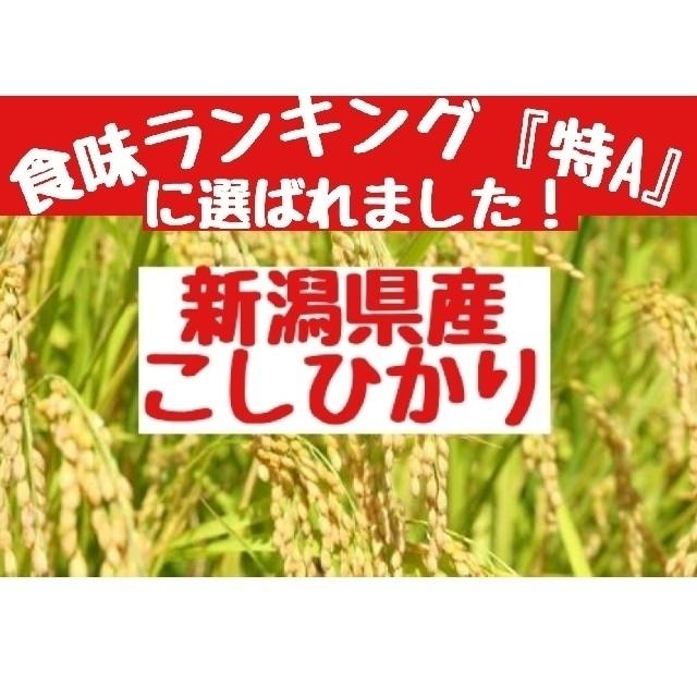 新潟県産こしひかり玄米20㎏(令和元年産) 食品/飲料/酒の食品(米/穀物)の商品写真