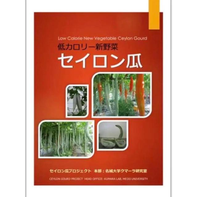 セイロン瓜 テキストと種 10粒 ④ 食品/飲料/酒の食品(野菜)の商品写真