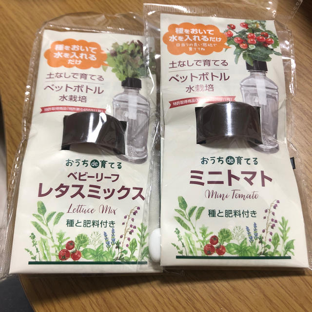 ペットボトル栽培キット 食品/飲料/酒の食品(野菜)の商品写真