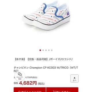 Champion - 新品チャンピオンスニーカー 16㎝